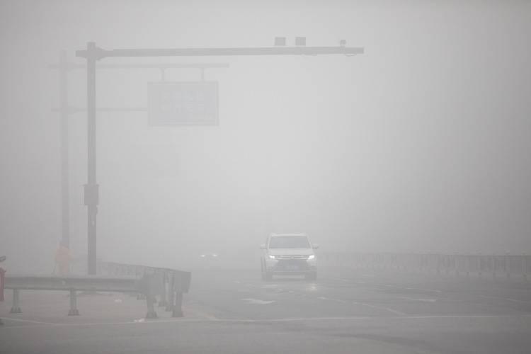 guidare nella nebbia