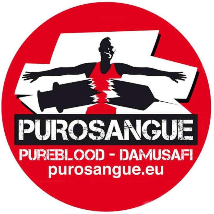 Purosangue