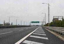 Autostrada auto si ribalta cani